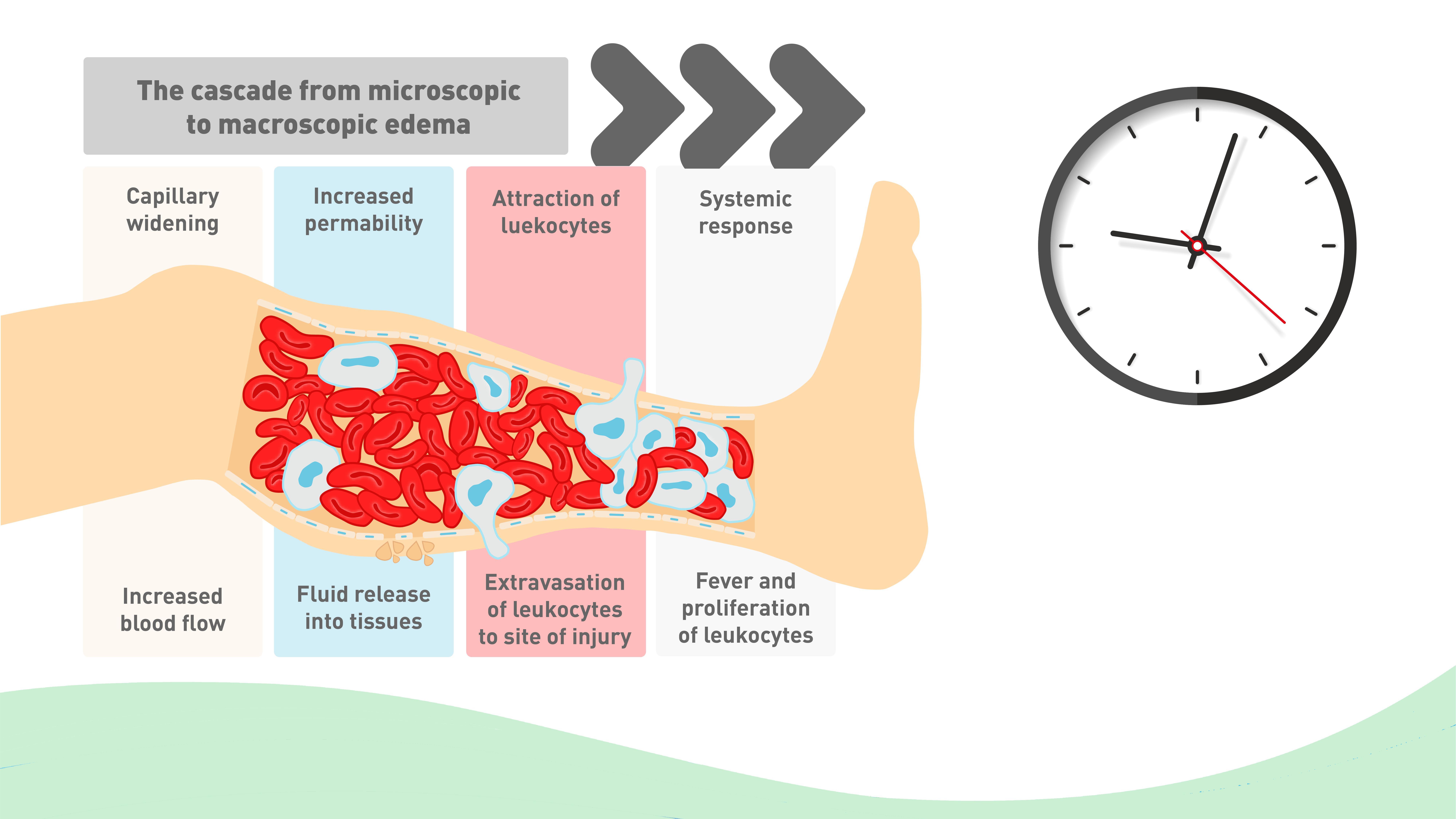 Diagram  Human Body Diagram Pressure Ulcer Full Version
